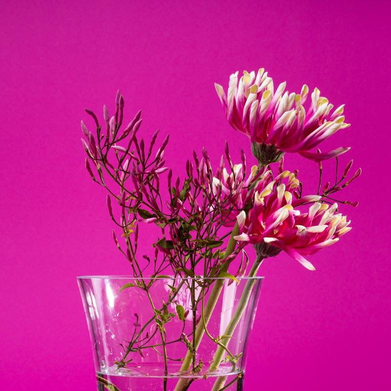 vitajuwel blumevase länger blühen mit edelsteinen im glas