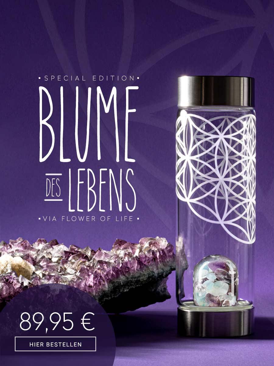 vitajuwel edelsteinwasser blume des lebens glasflasche edelsteine amethyst aquamarin bergkristall